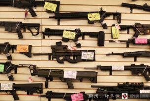 众议院11日表决通过两项法案,以加强对枪支销售和转让的背景调查,确保被禁止拥枪的个人无法获得枪支。
