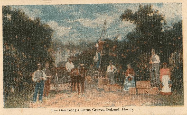 吕金功:美国华裔先驱和佛罗里达州的柑橘行家