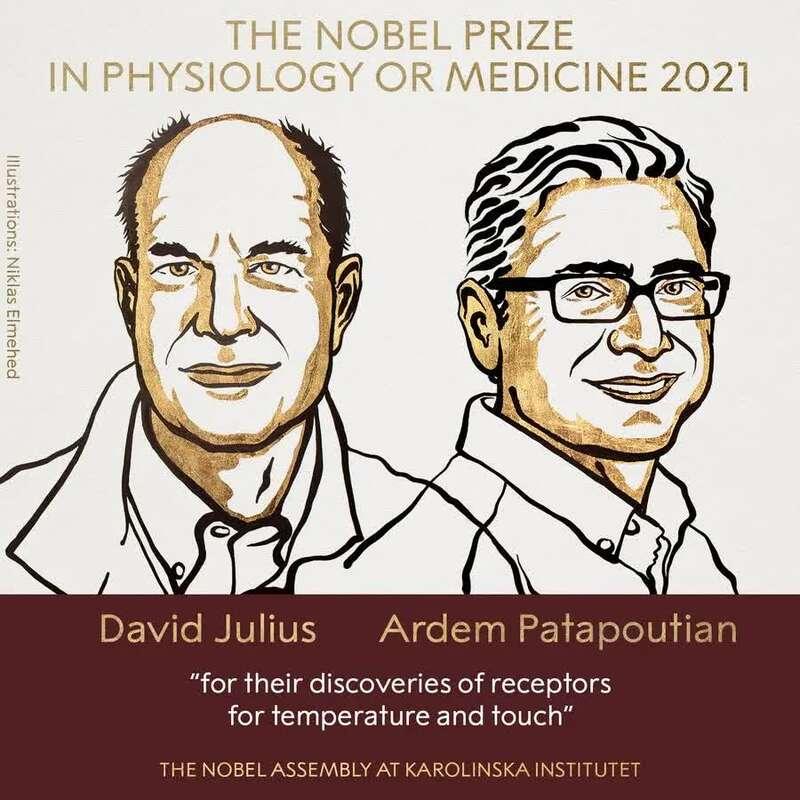 美国连续5年拿下诺贝尔生理学或医学奖